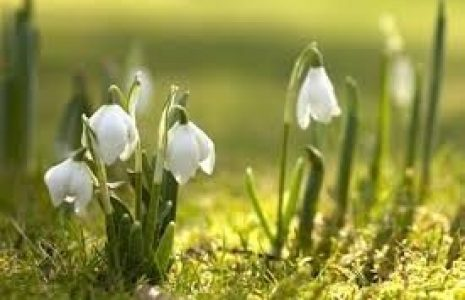 62-vitababy_popust_20_pomlad4-24be108b74a92e0e